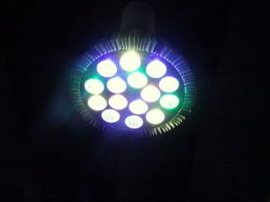 LED03